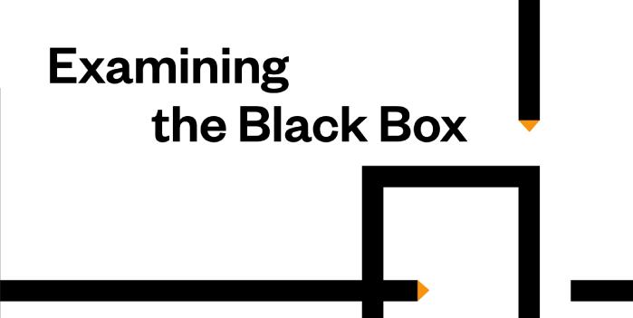 examiningtheblackbox2